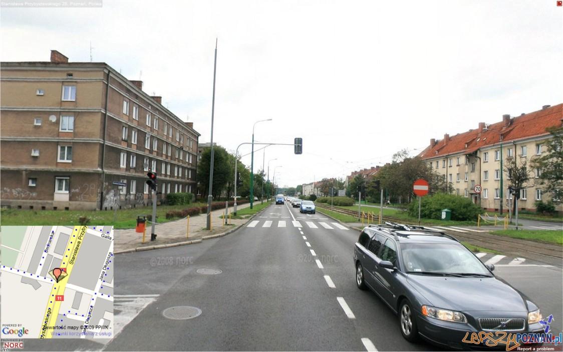 przybyszewskiego szamarzewo  Foto: