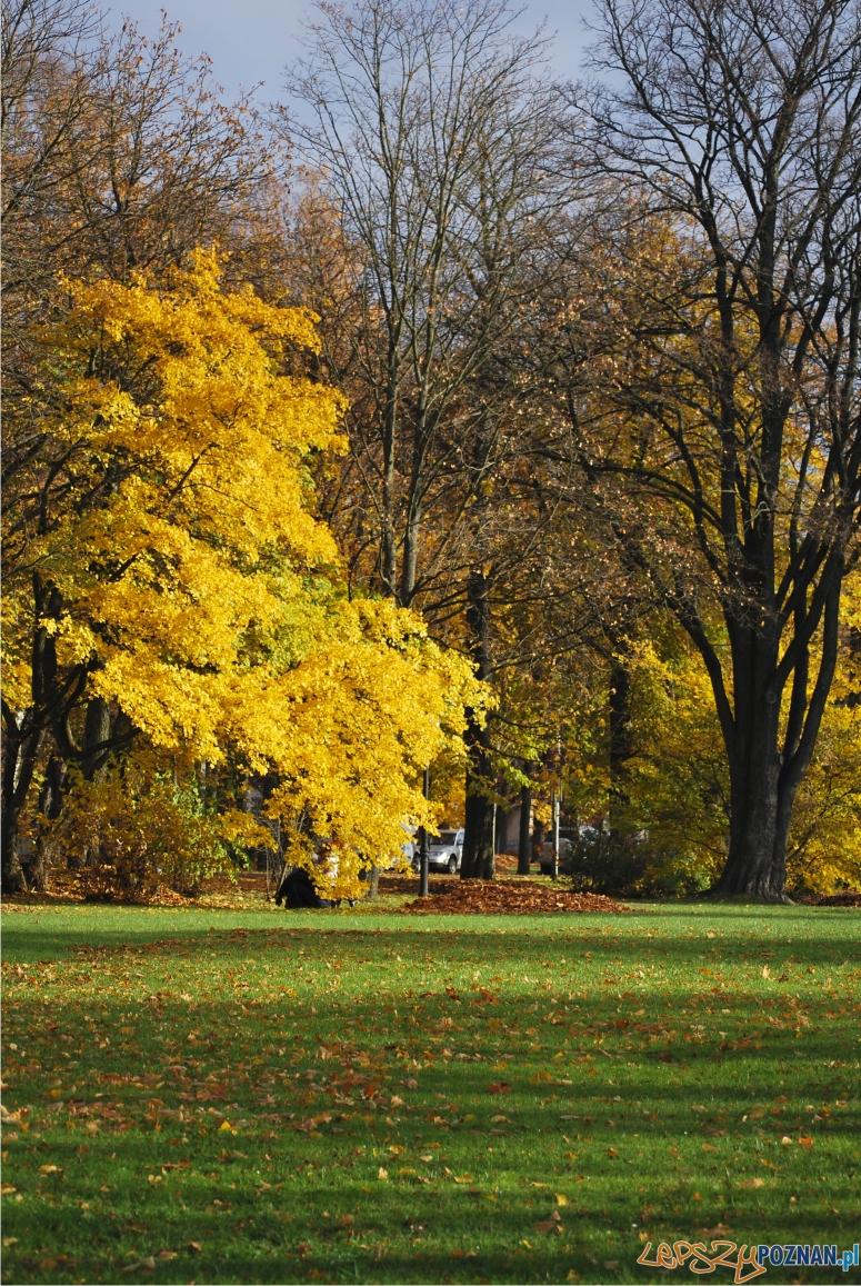 park  Foto: sxc