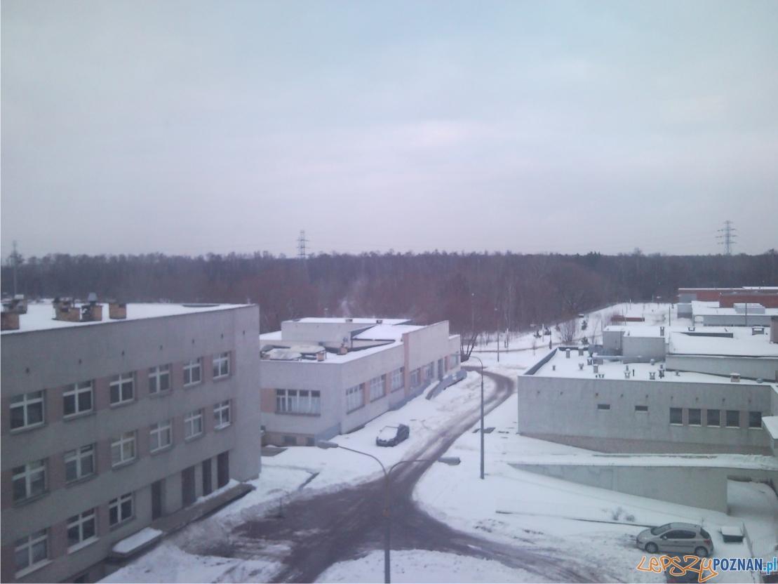 szpital kurlandzka  Foto: