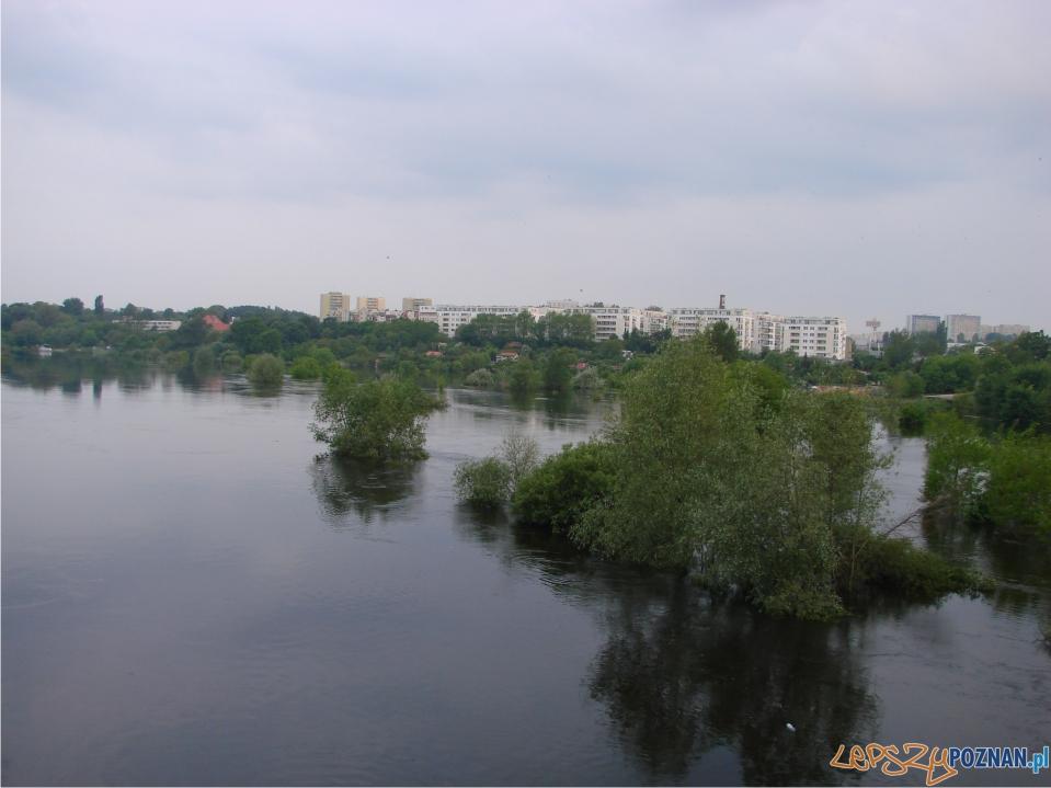 foto: lepszyPOZNAN - fala kulminacyjna - okolice ul. Lechickiej  Foto:
