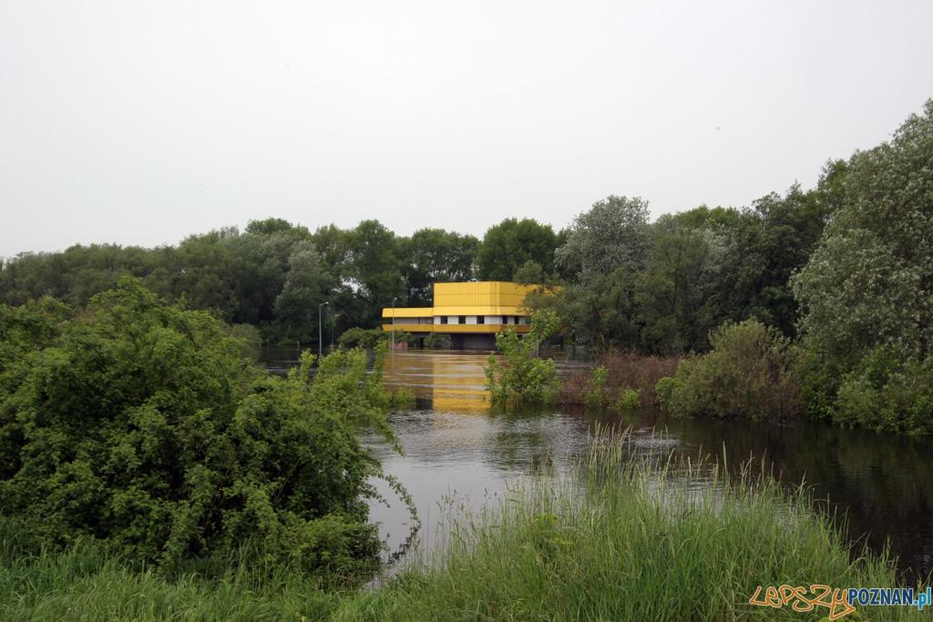 foto: lepszyPOZNAN - fala kulminacyjna - ujęcie wody Dębina  Foto: