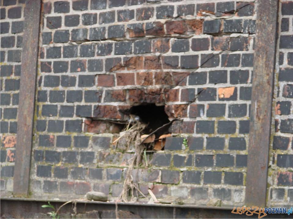 rekordowy poziom Warty - mury oporowe - dziury za którymi jest pustaka  Foto: lepszyPOZNAN.pl / ag