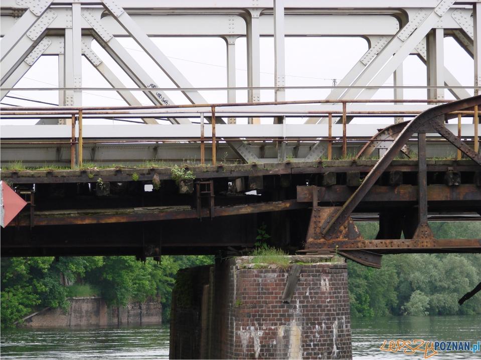 rekordowy poziom Warty - stary most kolejowy  Foto: lepszyPOZNAN.pl / ag