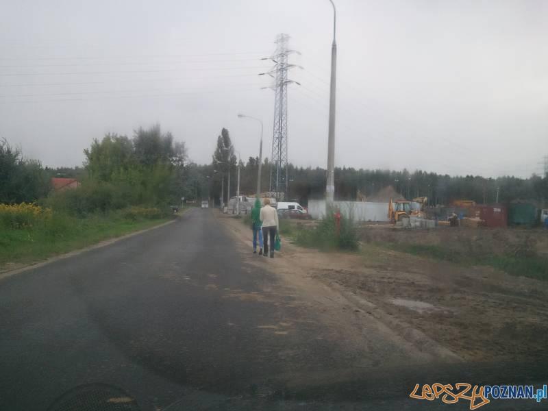 rano jeździ tędy sporo samochodów - każdemu się spieszy  Foto: lepszyPOZNAN.pl / gsm