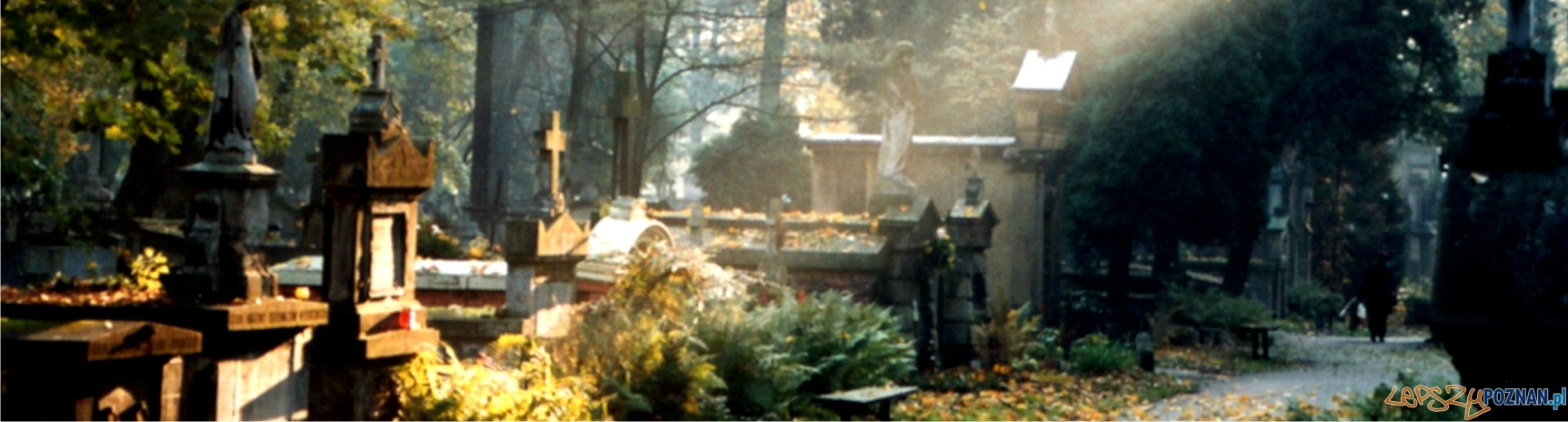 panorama cmentarz  Foto: sxc
