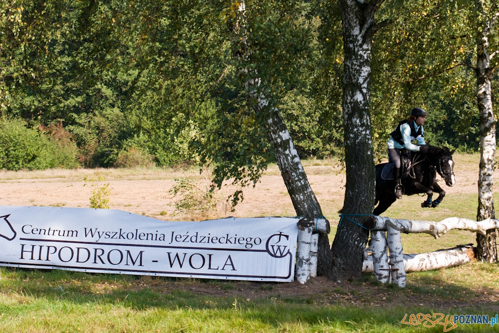 Ostatni dzień Mistrzostw Na Hipodromie Wola  Foto: Piotr Rychter