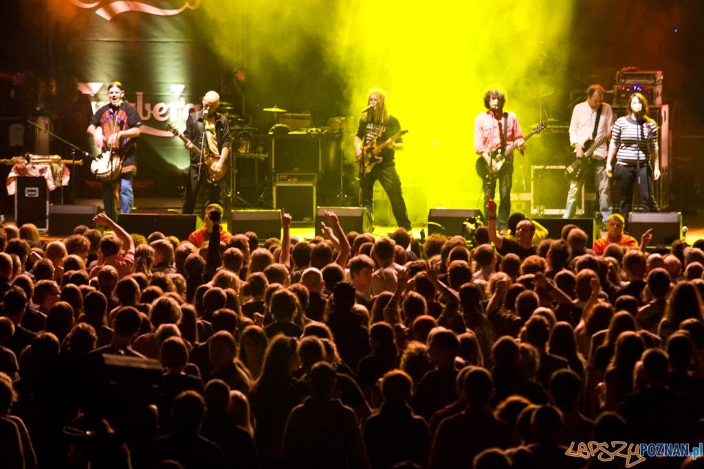 Indios Bravos Music Meeting - Izrael  Foto: Piotr Rychter