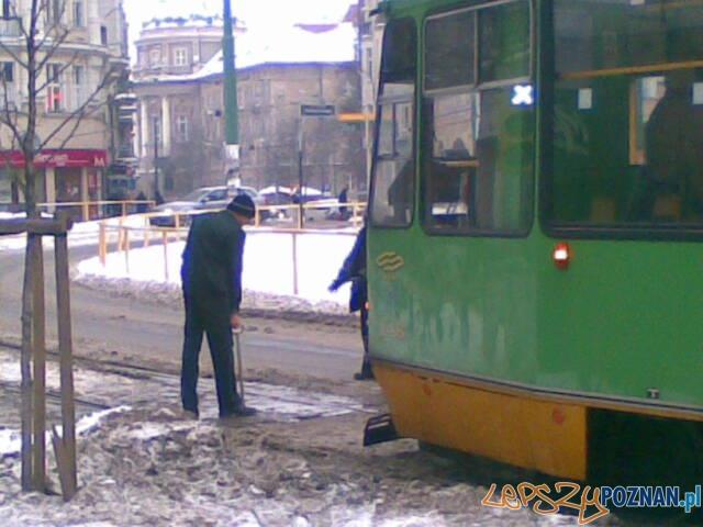 Dzień pieszego pasażera  Foto: