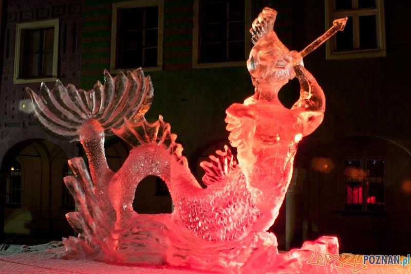 V Festiwal Rzeźb Lodowych w Poznaniu - 12.12.2010 r.  Foto: Paweł Rychter
