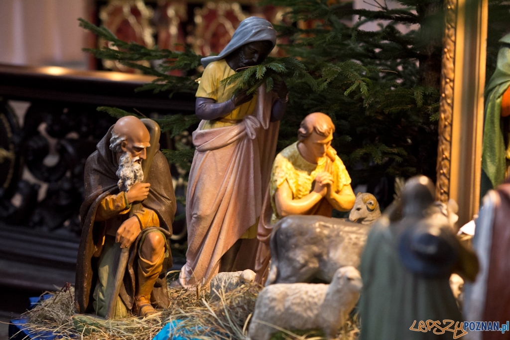 Szopki bożonarodzeniowe - Kościół Farny  Foto: Piotr Rychter