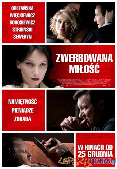 Zwerbowana Miłość  Foto: