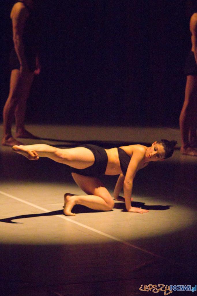 """IV Festiwal Atelier Polskiego Teatru Tańca - """"The outline"""" chor. Karolina Wyrwał  Foto: lepszyPOZNAN.pl / Piotr Rychter"""