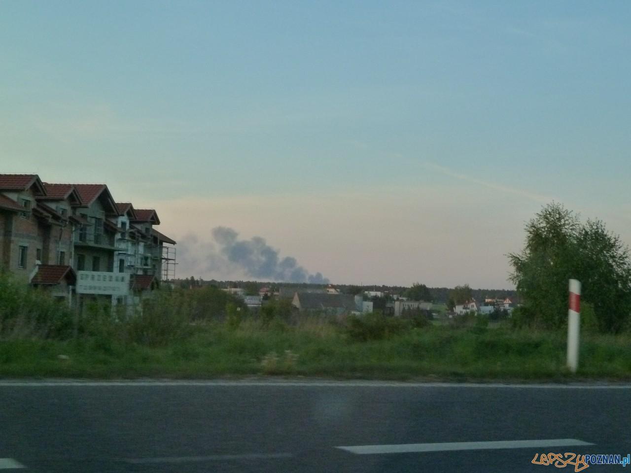 Zdjęcia z trasy Stęszew-Komorniki  Foto: Maciej Koterba