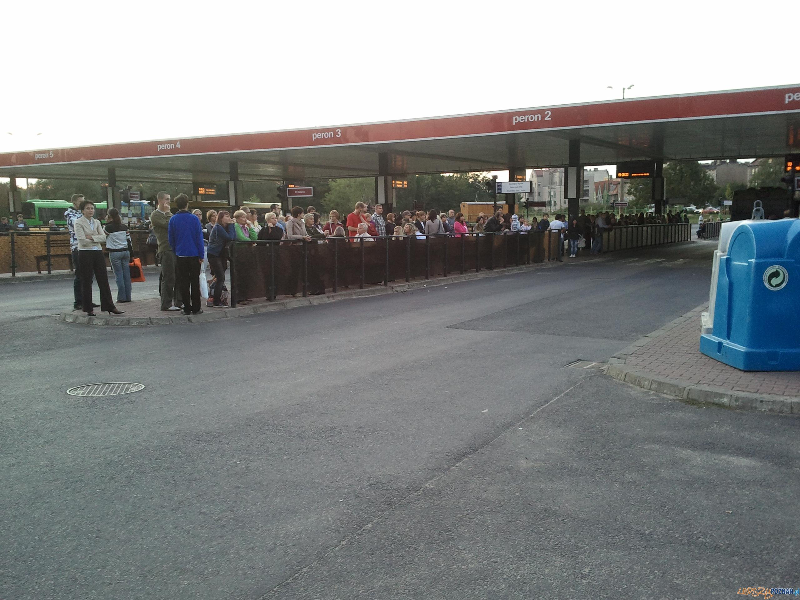 Korek gigant - rondo Śródka - pasażerowie czekają na autobus  Foto: LepszyPOZNAN.pl/gsm