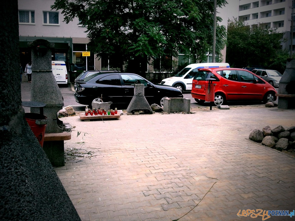 Czy grille znikną z kampusu?  Foto: lepszyPOZNAN.pl / ag