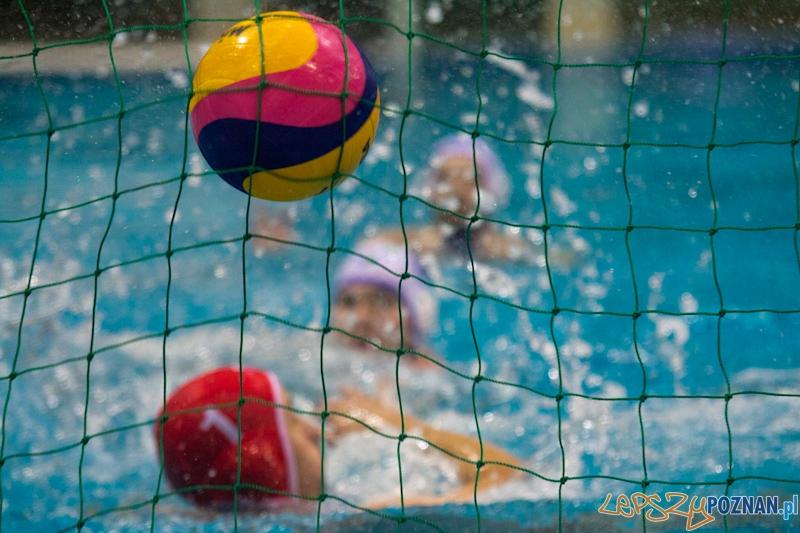 Prezentacja zespołu KS Waterpolo Poznań  Foto: lepszyPOZNAN.pl / Piotr Rychter
