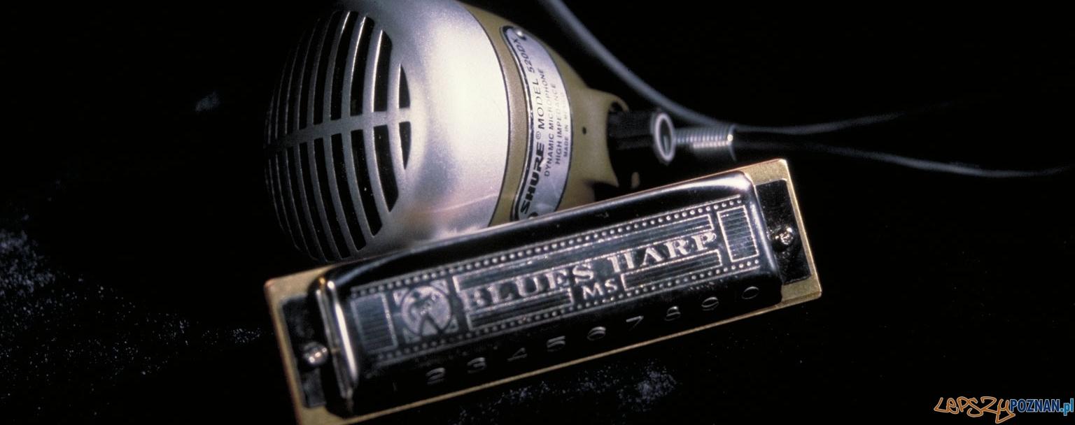 blues harp  Foto: sxc