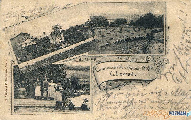 Gieźnieńska 32 - Głowna  Foto: Muzeum Narodowe w Poznaniu, wystawa Miejska ikonosfera na drukach reklamowych z widokami Poznania 18