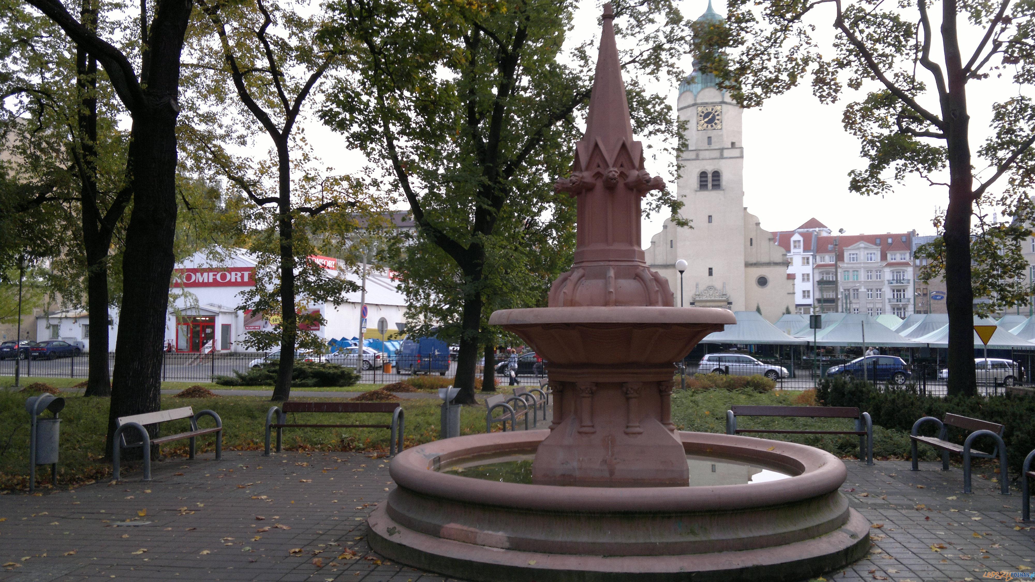 Skwer plac Marii Skłodowskiej Curie  Foto: