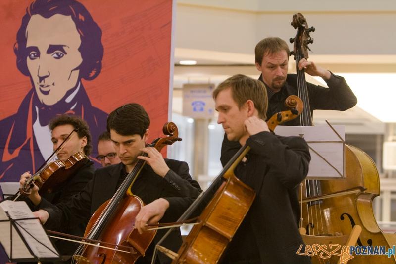 203 urodziny Chopina - Orkiestra Kameralna Posnania - Poznań Plaza 24.02.2013 r.  Foto: lepszyPOZNAN.pl / Piotr Rychter