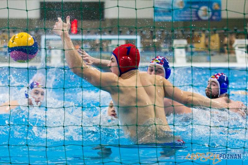 KS Alstal Waterpolo Poznań - Arkonia Szczecin - Termy Maltańskie 9.02.2013 r.  Foto: lepszyPOZNAN.pl / Piotr Rychter