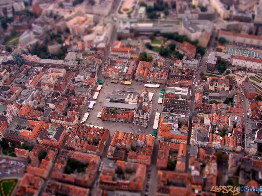 Stary Rynek mini  Foto: lepszyPOZNAN.pl / ag