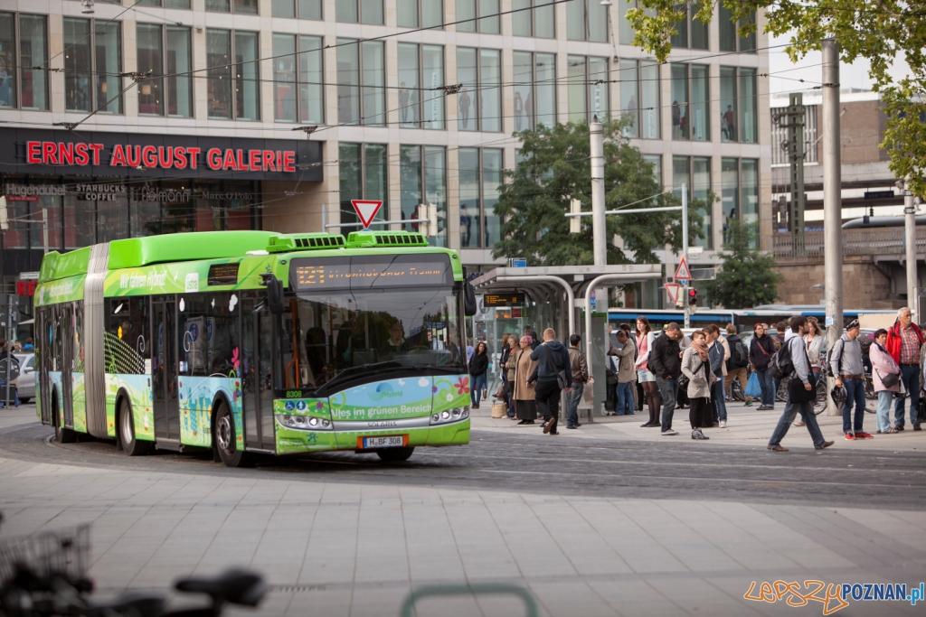 Solaris Urbino 18 Hybrid  Foto: Ustra