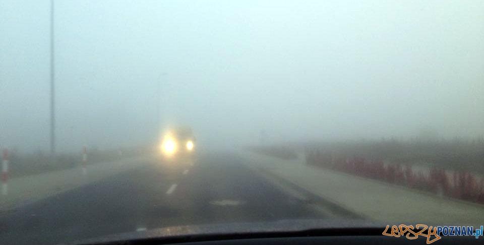 Poranna mgła  Foto: Bartek