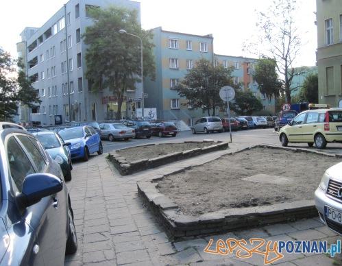 Skwer na Widzie czeka na rewitalizację (2)  Foto: ZDM