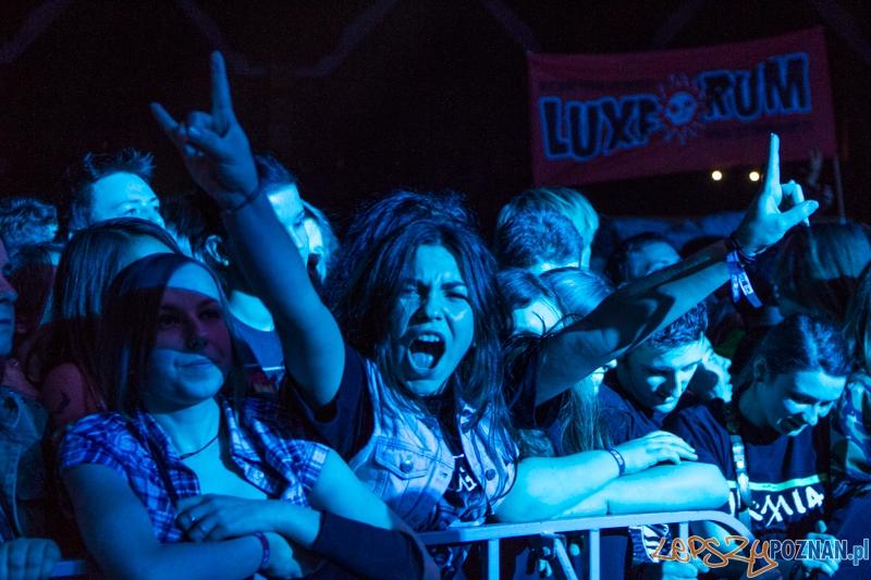 Luxfest 2013 - Luxtorpeda - Poznań 16.11.2013 r.  Foto: LepszyPOZNAN.pl / Paweł Rychter