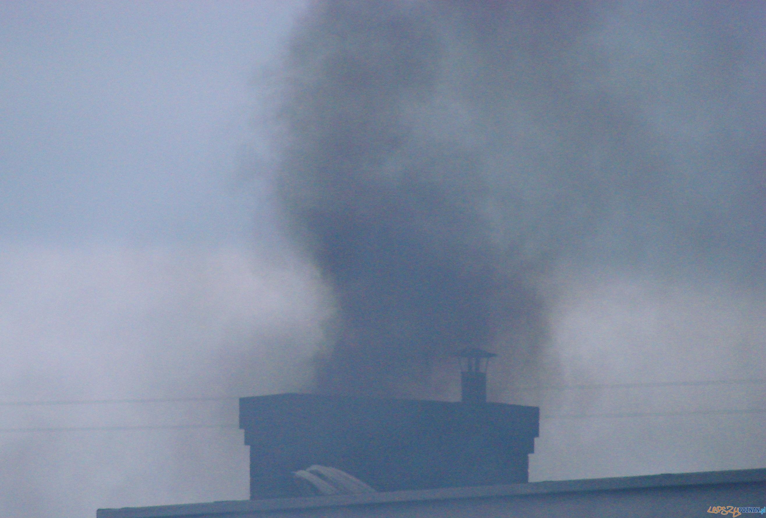 Dym z komina  Foto: lepszyPOZNAN.pl / ag