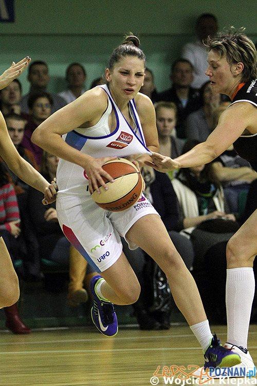 Koszykarki AZS (2)  Foto: Wojciech Klepka