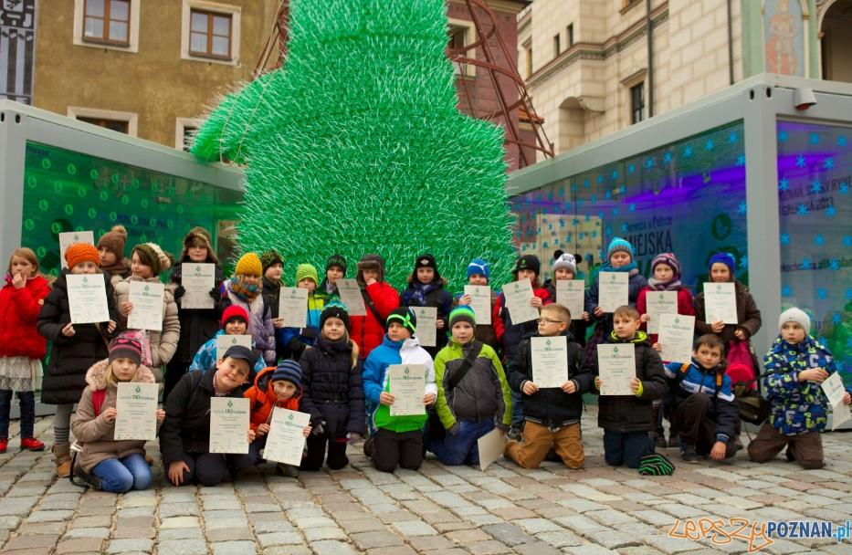 Dzieciaki budują choinke  Foto: materiały prasowe