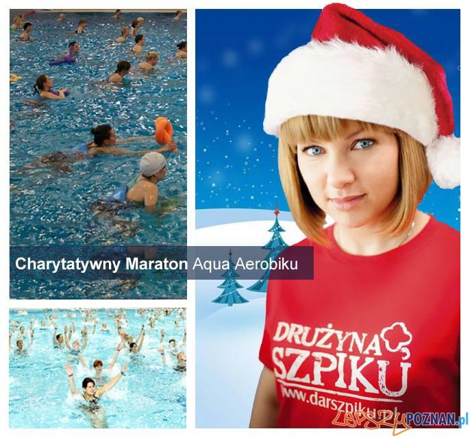 Aqua maraton Fregaty  Foto: