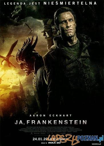 Ja, Frankenstein  Foto: materiały prasowe