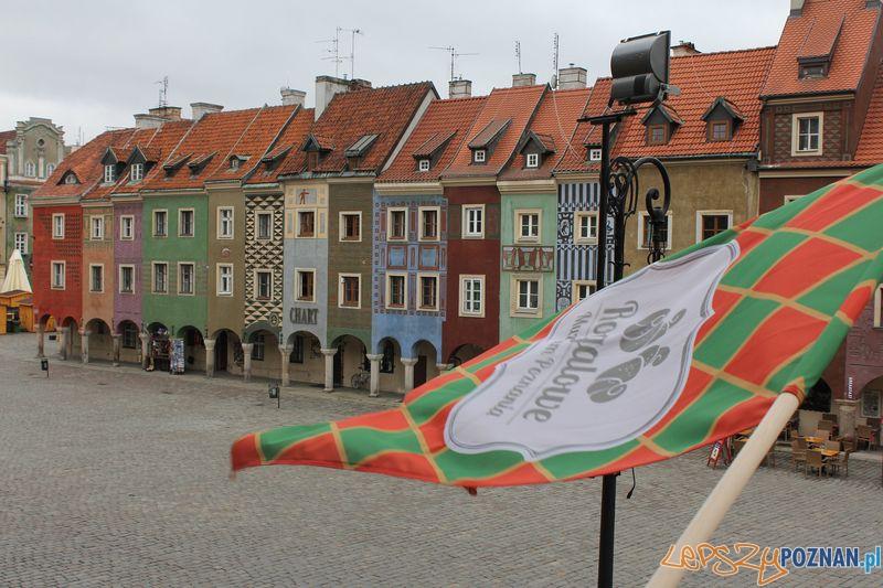 Muzeum Rogala z widokiem na Stary Rynek  Foto: UMP