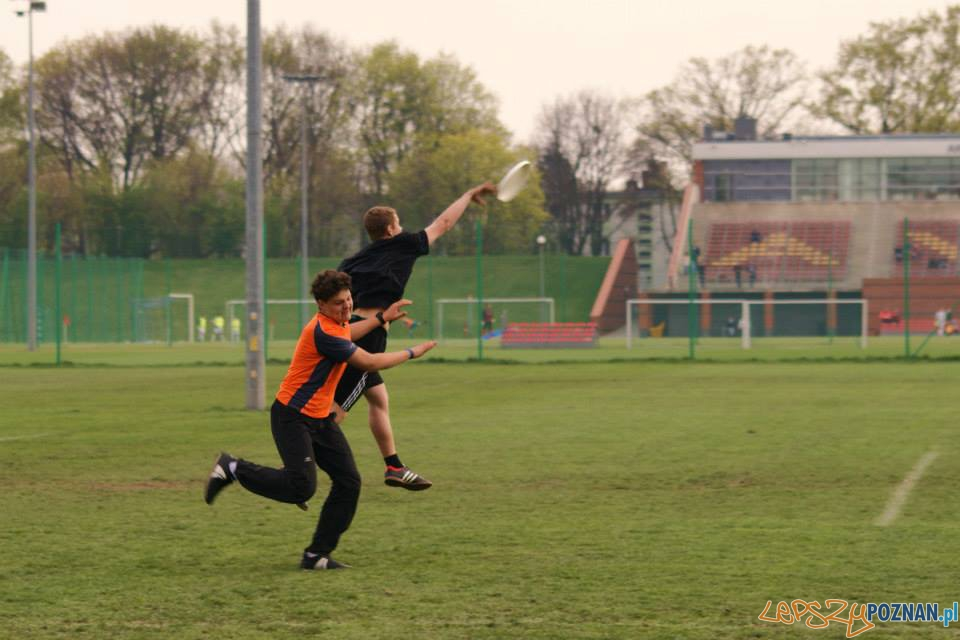 Ulitimate frisbee (9)  Foto: