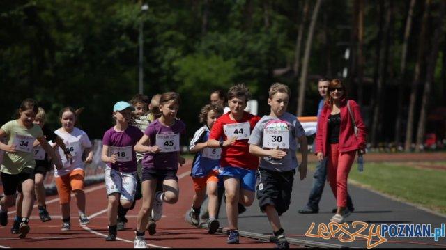 Triathlon Sierakow  - bieg dzieciaków  Foto: Imprezy triathlonowe cieszą się coraz większą popularnością. W zawodach startują dorośli i dzieci. I