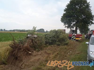 Wypadek w Wygodzie  Foto: KP PSP we Wrześni