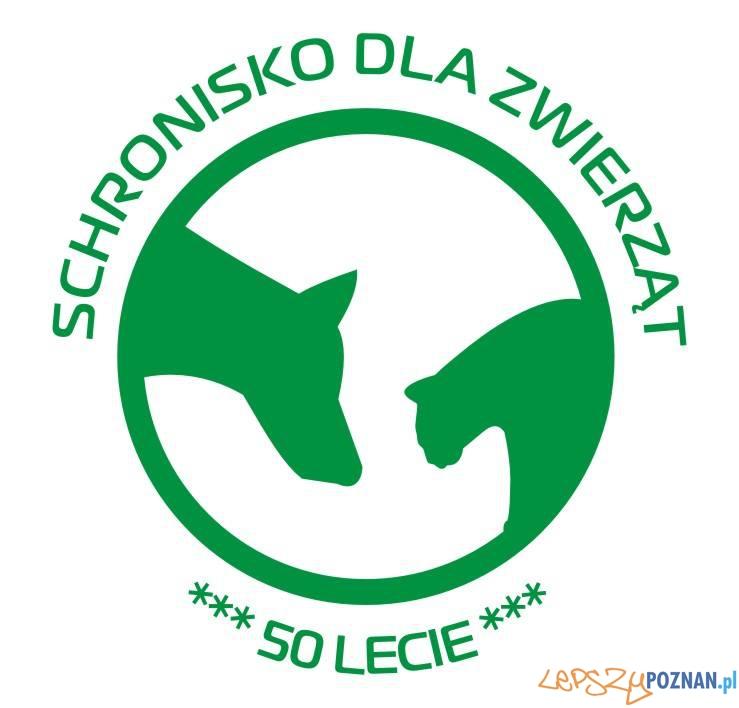 Schronisko dla zwierząt w Poznaniu - 50-lecie  Foto: