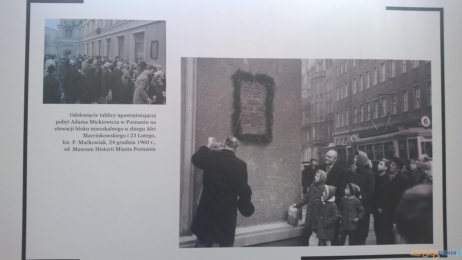 Poznańskie archiwa na Placu Wolności (1)  Foto: TD