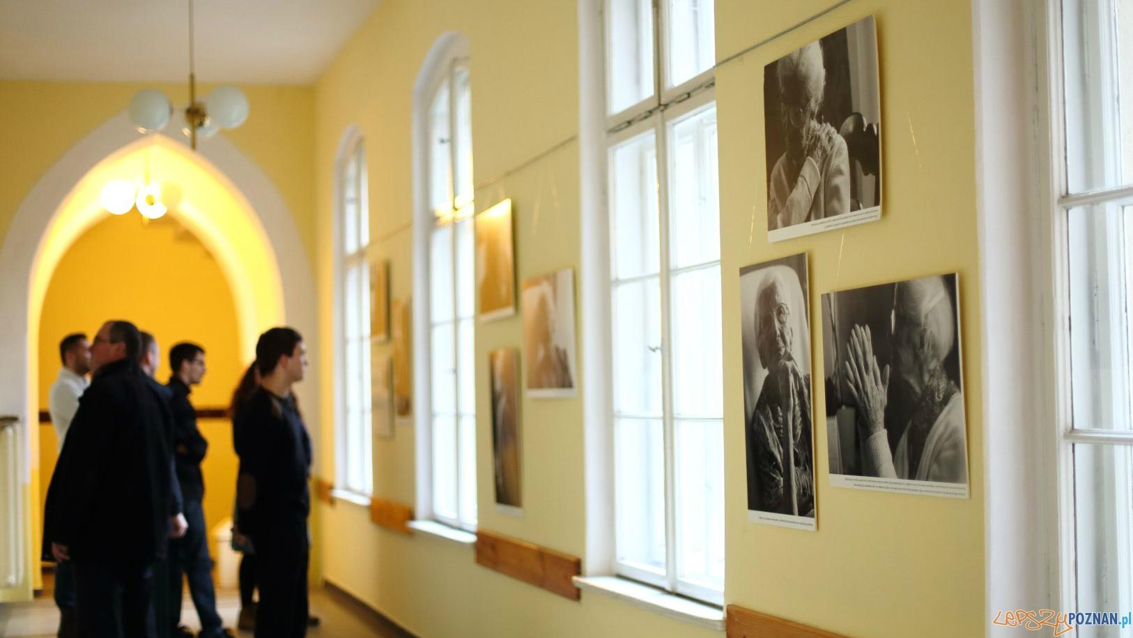 Portrety Wandy Błeńskiej  Foto: Agata Ożarowska-Nowicka