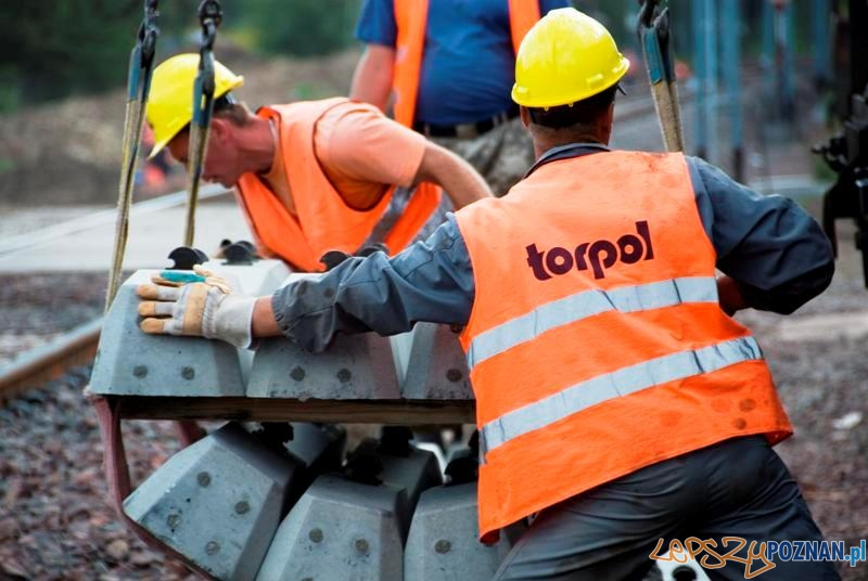 Torpol z zyskiem i norweskimi kontraktami  Foto: Torpol