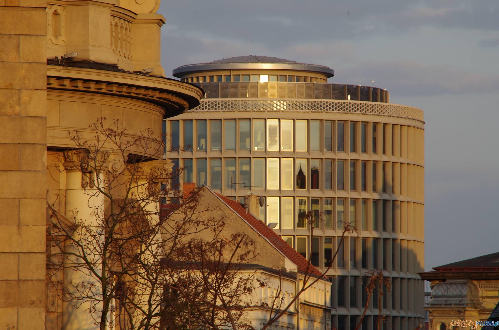 Okrąglak  Foto: popoznaniu.pl