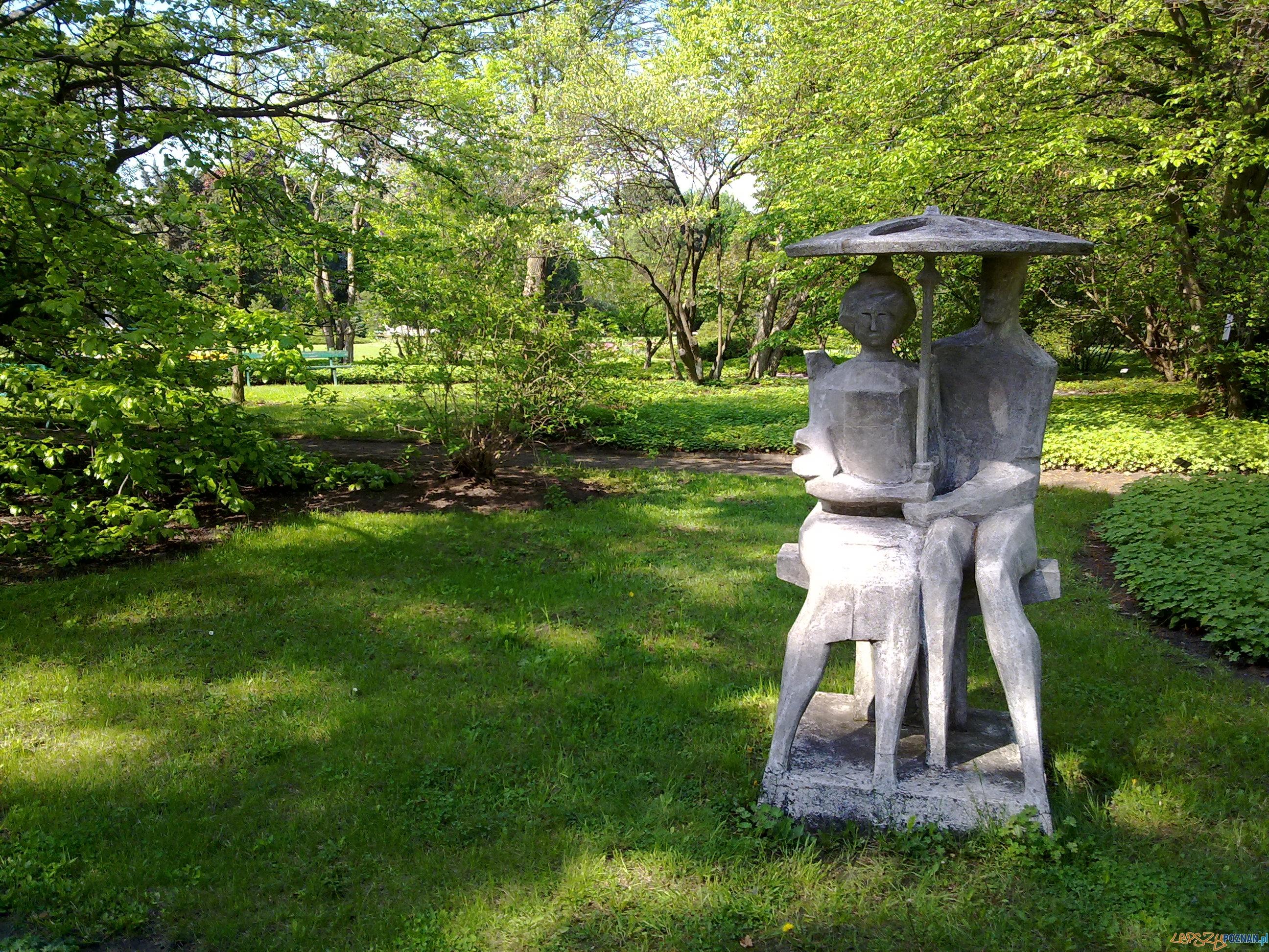 Ogród Botaniczny UAM, rzeźba w parku  Foto: Tomasz Dworek