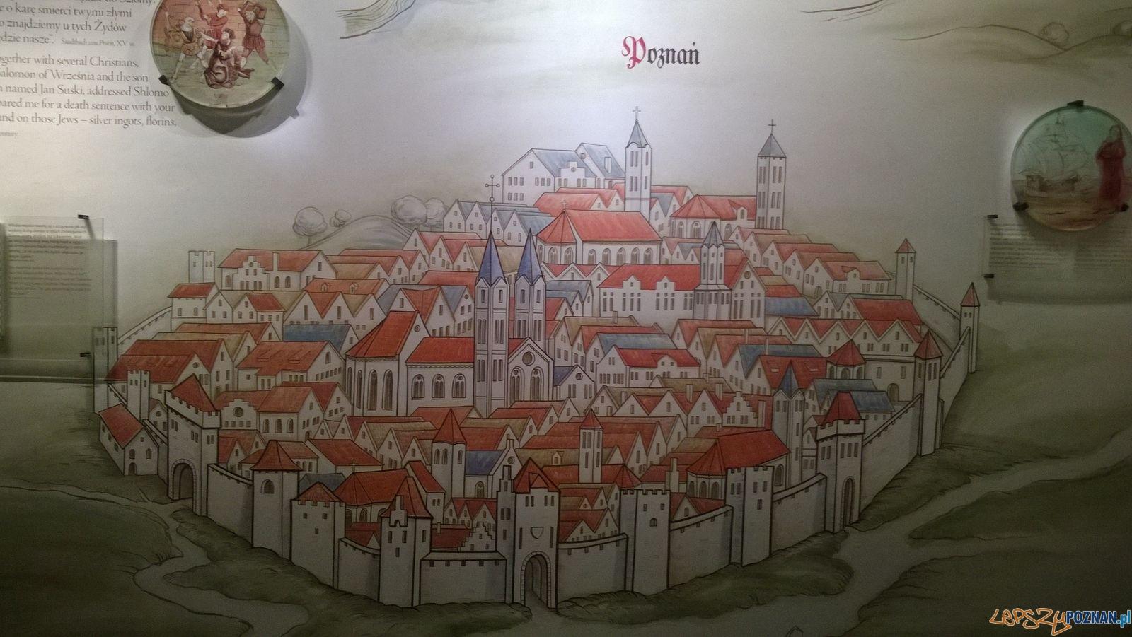 Mapa Poznania w Muzeum Polin  Foto: TD