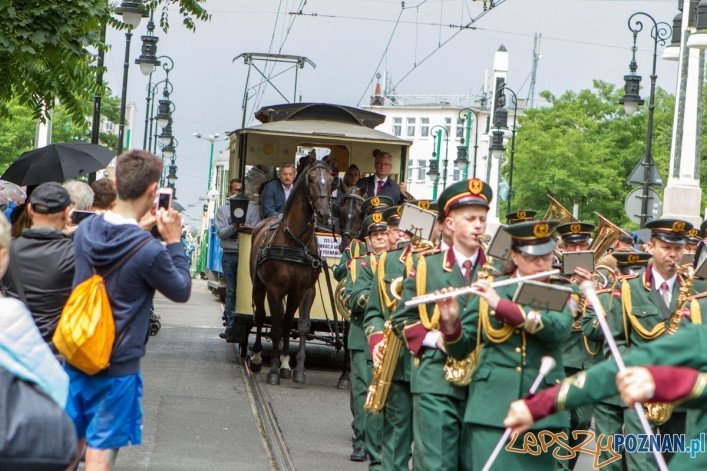 135 komunikacji miejskiej w Poznaniu - 21.06.2015 r.  Foto: LepszyPOZNAN.pl / Paweł Rychter