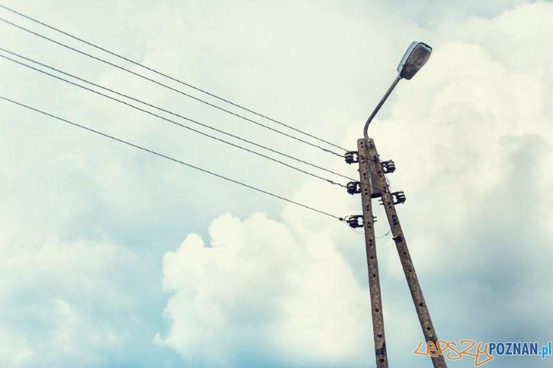 Elektryfikaja Wildy  Foto: SPOT