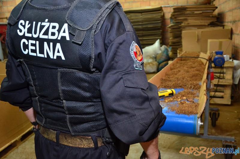 Nielegalna produkcja ćmików  Foto: KW Policji w Poznaniu