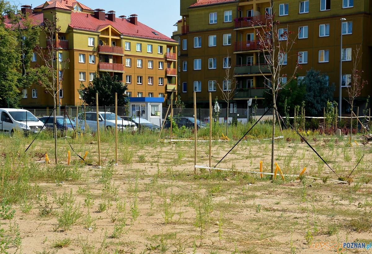 Parking dla pacjentów POSUM  Foto: UM Poznania